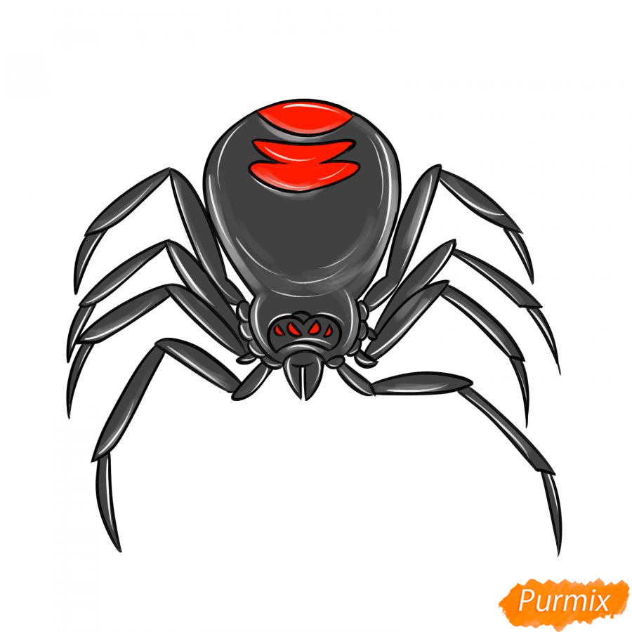 Рисуем страшного паука на Хэллоуин - шаг 8