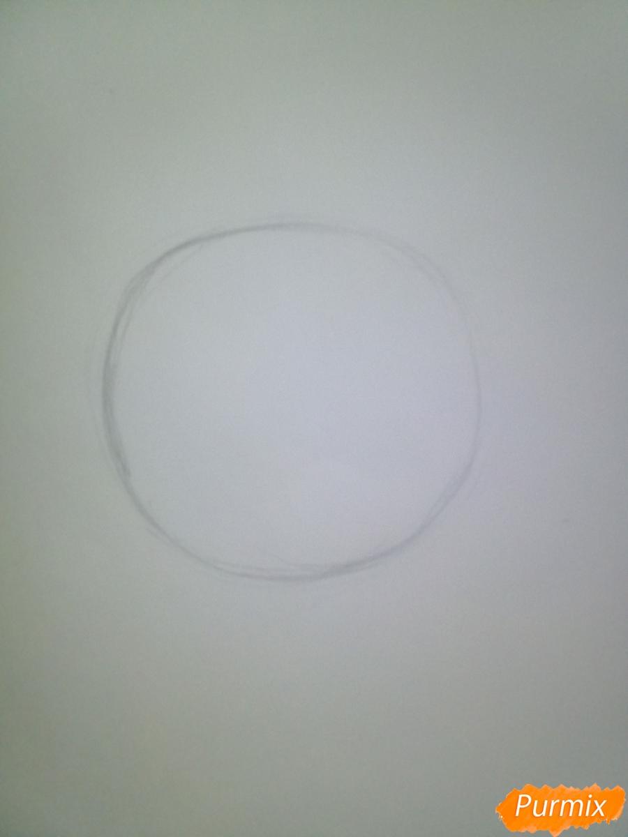 Рисуем свинью символ 2019 года карандашами - шаг 1