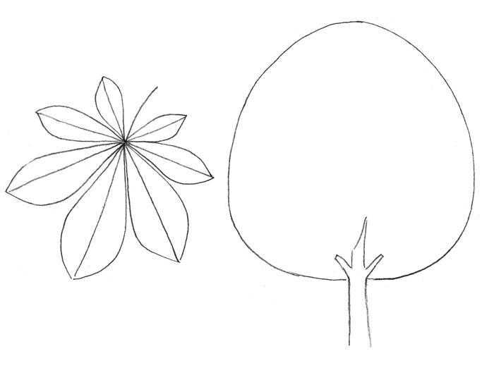 Как легко нарисовать каштановое дерево - шаг 1