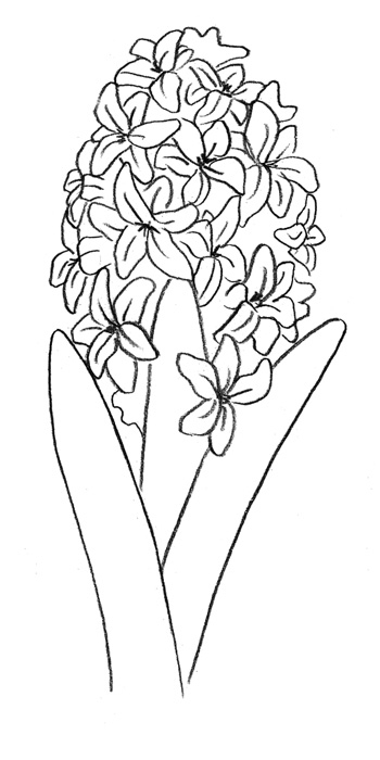 Рисуем гиацинт  или красками - шаг 3