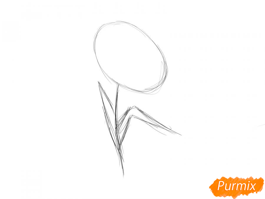 Как легко нарисовать астру детям - шаг 2