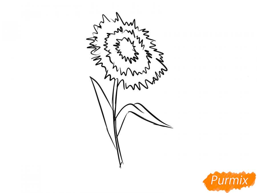 Как легко нарисовать астру детям - шаг 6