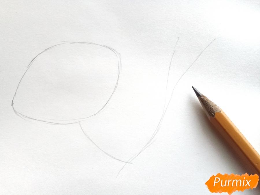 Рисуем белую лилию - шаг 1