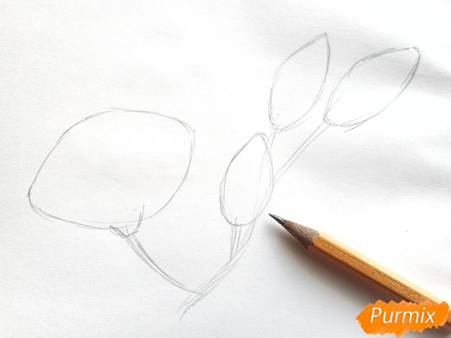Рисуем белую лилию - шаг 2