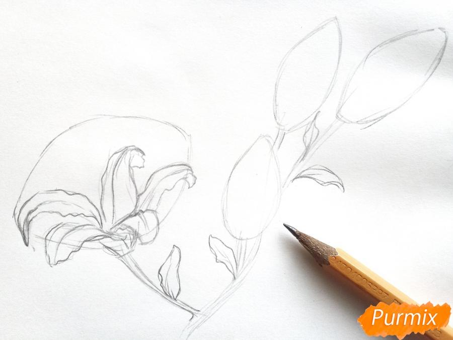 Рисуем белую лилию - шаг 3