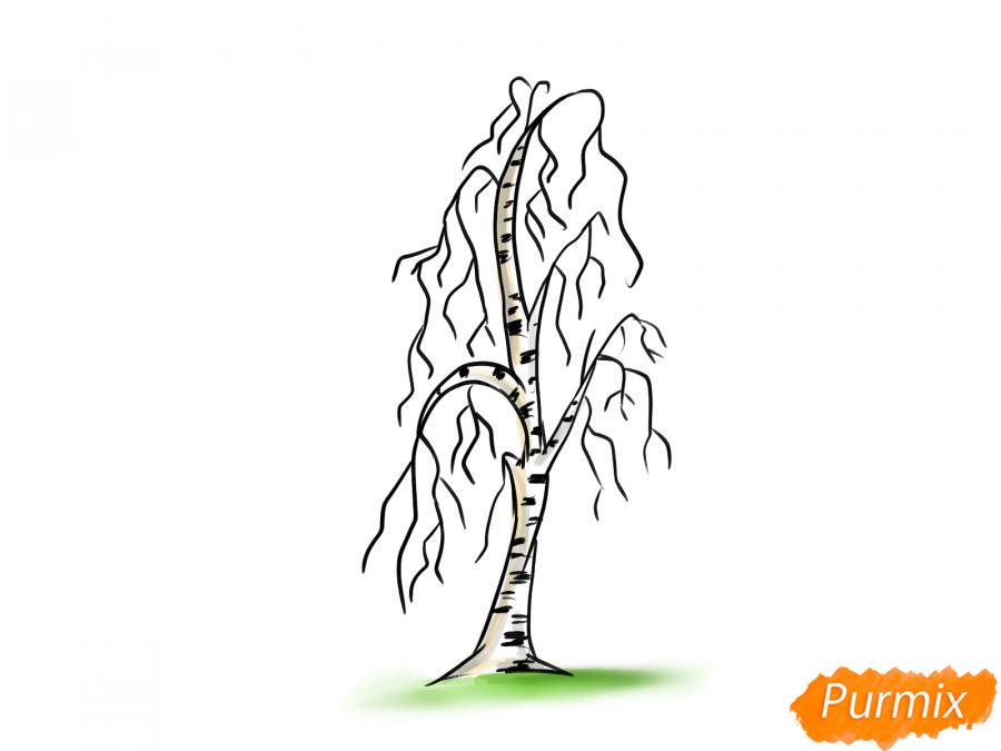 Рисуем березу без листьев - шаг 8