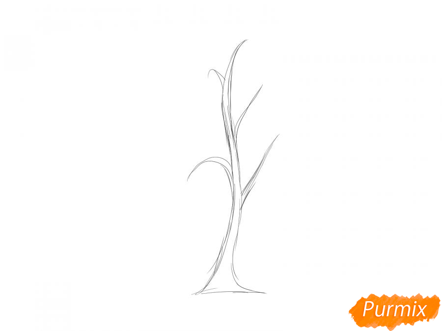 Рисуем березу весной с почками - шаг 2