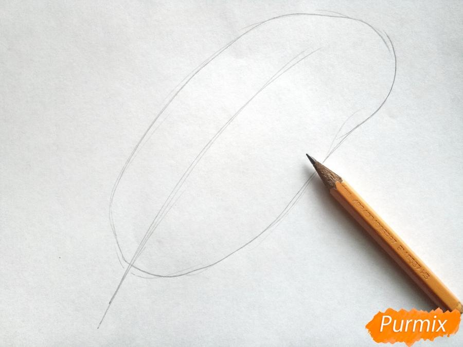 Рисуем большой лист пальмы - шаг 1