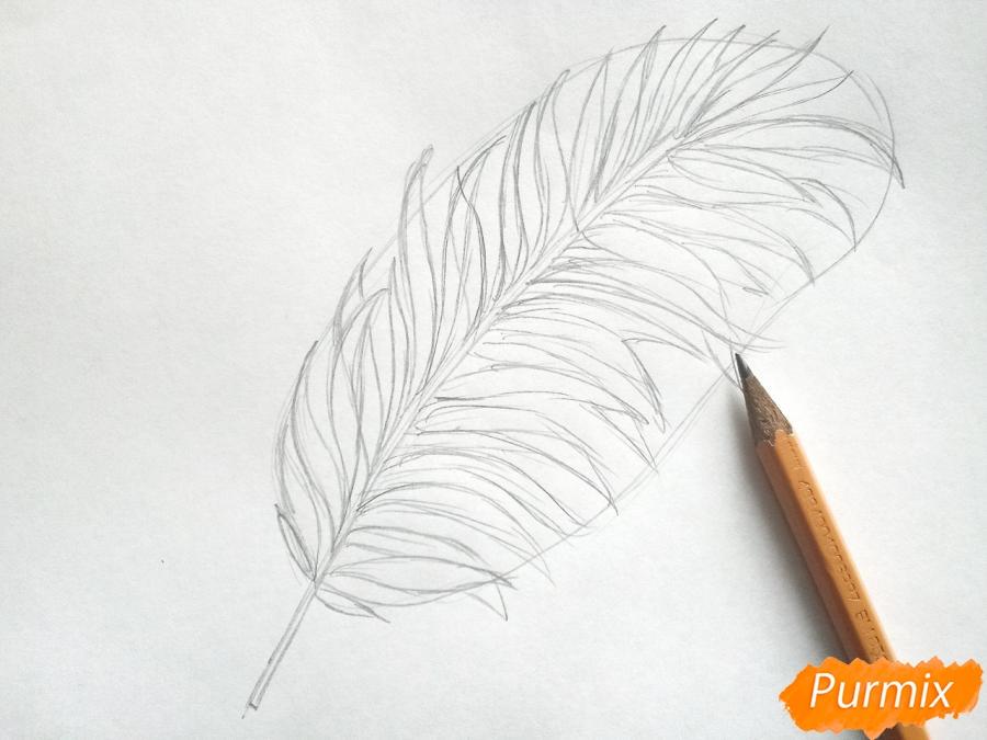 Рисуем большой лист пальмы - шаг 2