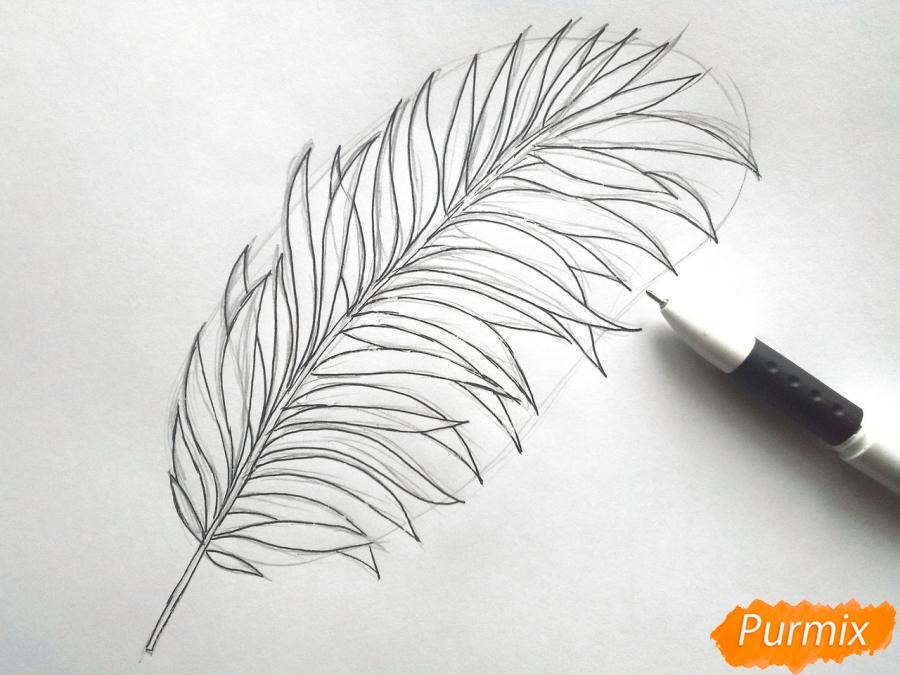 Рисуем большой лист пальмы - шаг 3