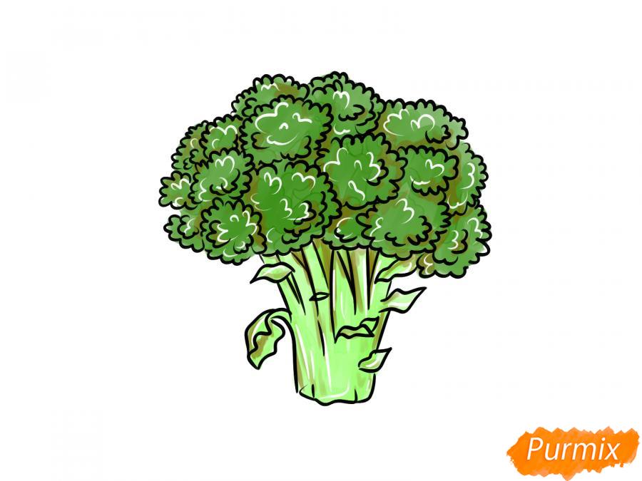 Рисуем брокколи  и красками - шаг 10
