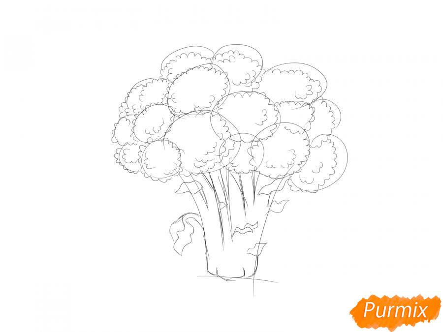 Рисуем брокколи  и красками - шаг 5
