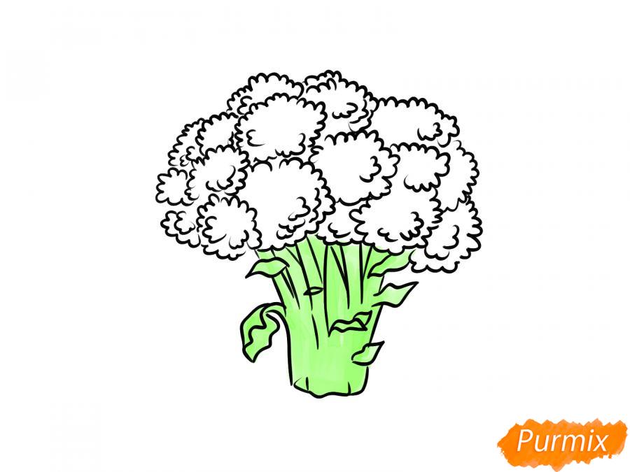 Рисуем брокколи  и красками - шаг 8