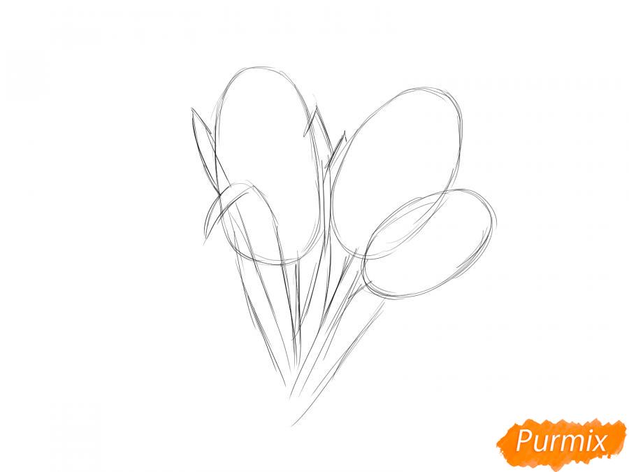 Рисуем букет гиацинтов - шаг 2