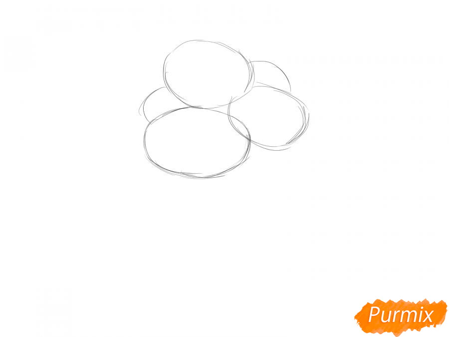 Рисуем букет хризантем - шаг 1