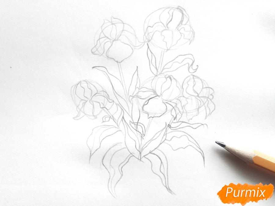 Рисуем букет ирисов цветными карандашами - шаг 3