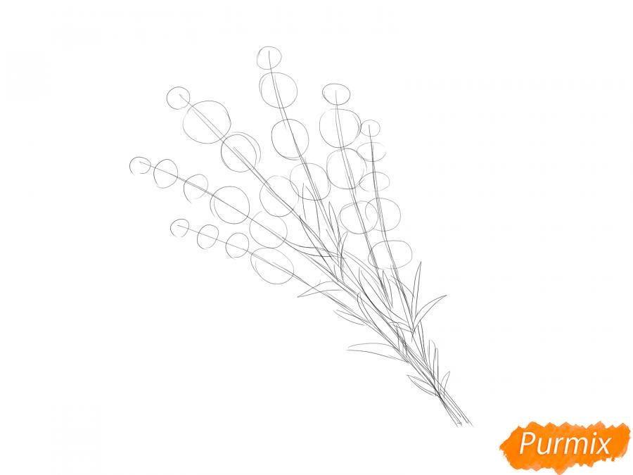 Рисуем букет лаванды - шаг 3