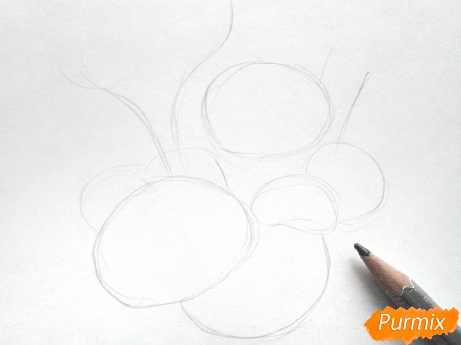Рисуем букет осенних цветов - шаг 1
