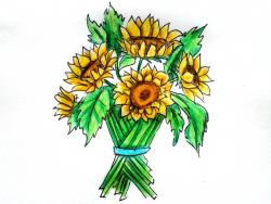 Фото букет подсолнухов карандашом