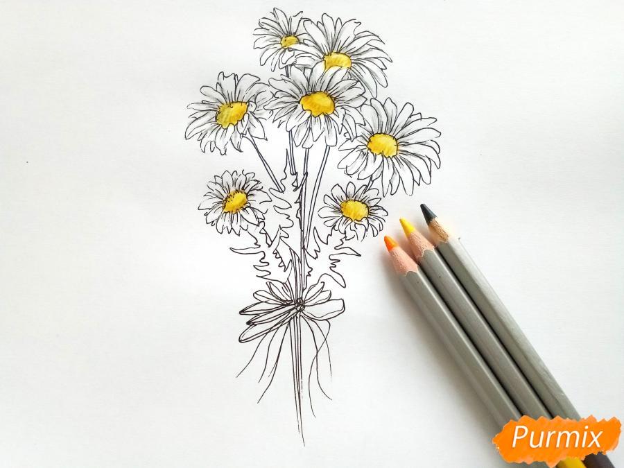 Рисуем букет ромашек цветными карандашами - шаг 4