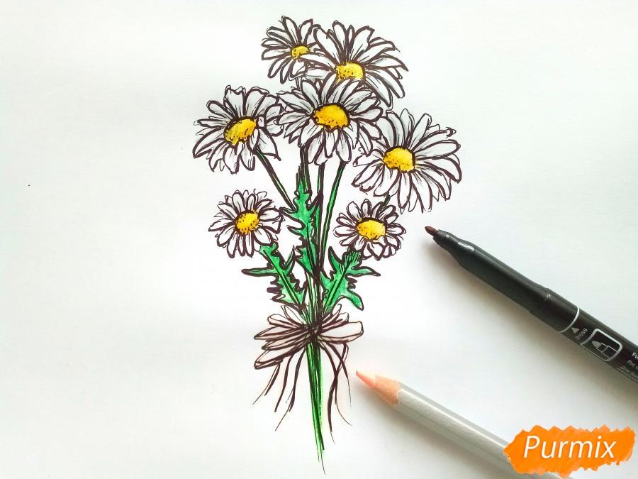 Рисуем букет ромашек цветными карандашами - шаг 6