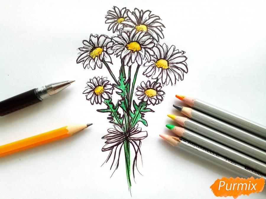 Рисуем букет ромашек цветными карандашами - шаг 7
