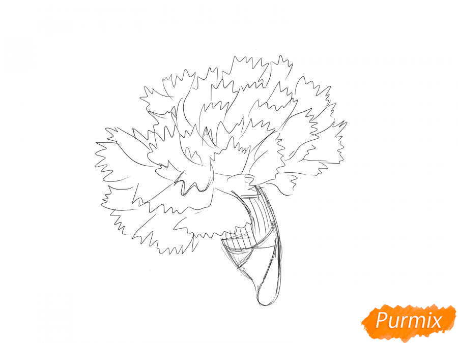 Рисуем бутон гвоздики - шаг 5