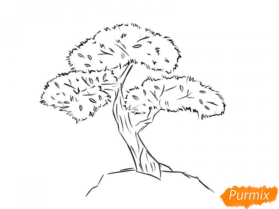 Рисуем чайное дерево карандашами - шаг 5