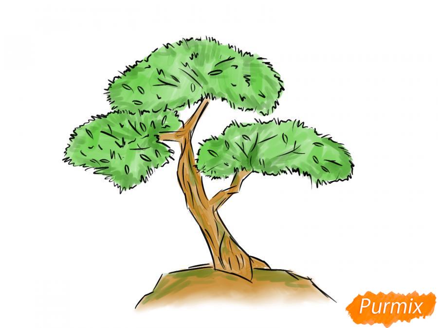 Рисуем чайное дерево карандашами - шаг 8