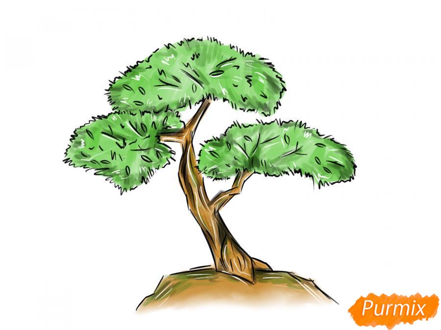Рисуем чайное дерево карандашами - шаг 9