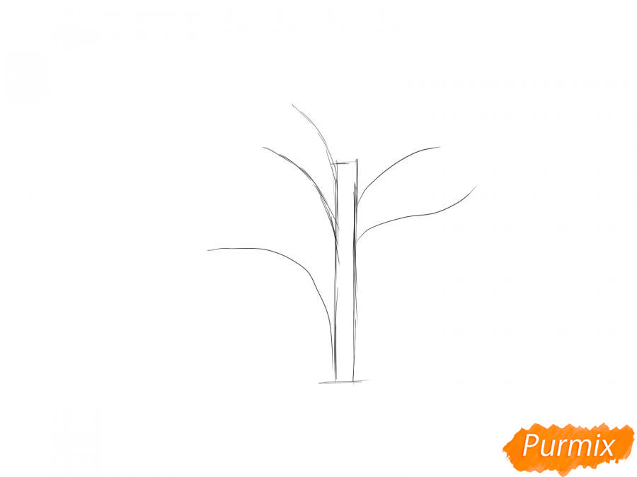Рисуем дерево без листьев - шаг 2