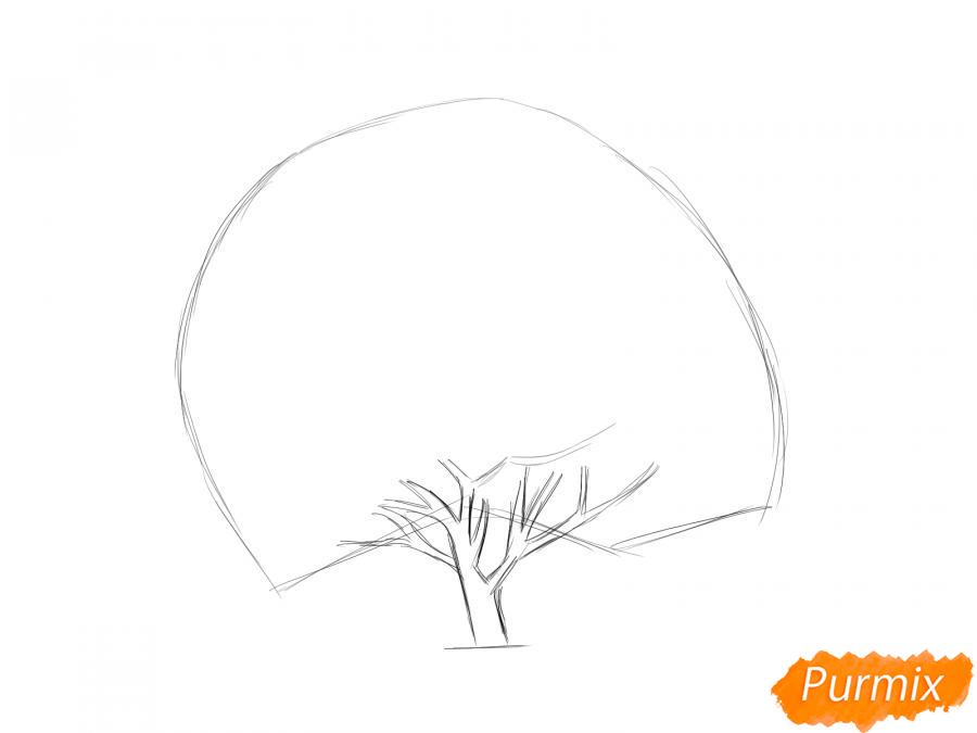 Рисуем дерево грецкого ореха осенью - шаг 3