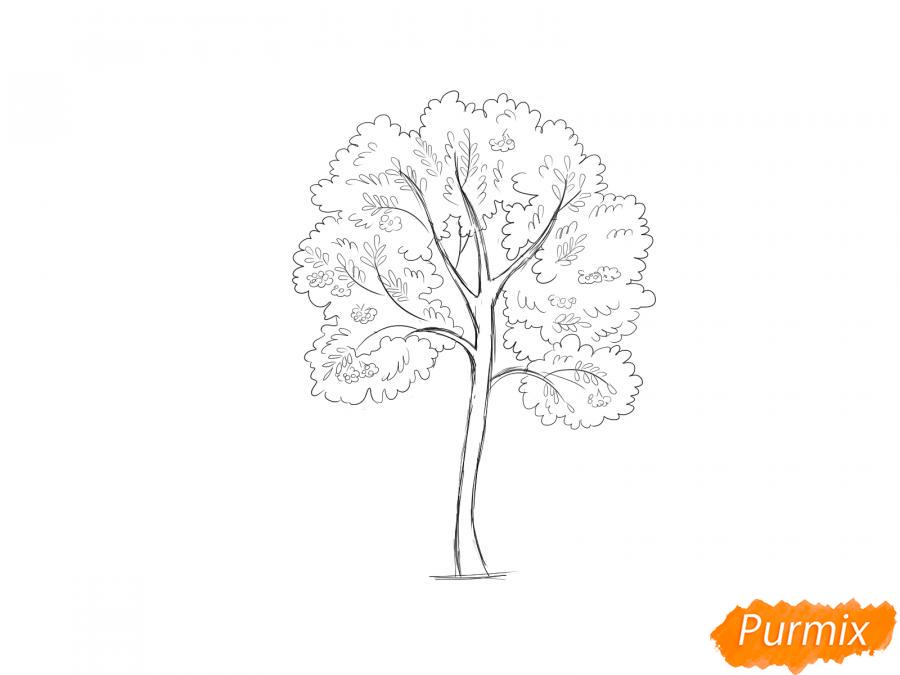 Рисуем дерево рябины - шаг 6