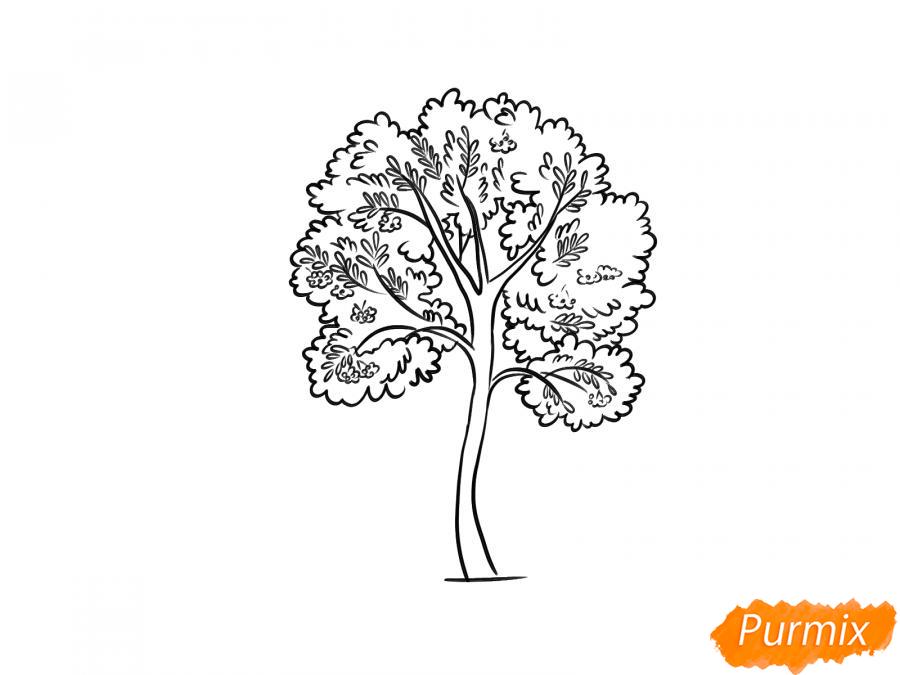 Рисуем дерево рябины - шаг 7