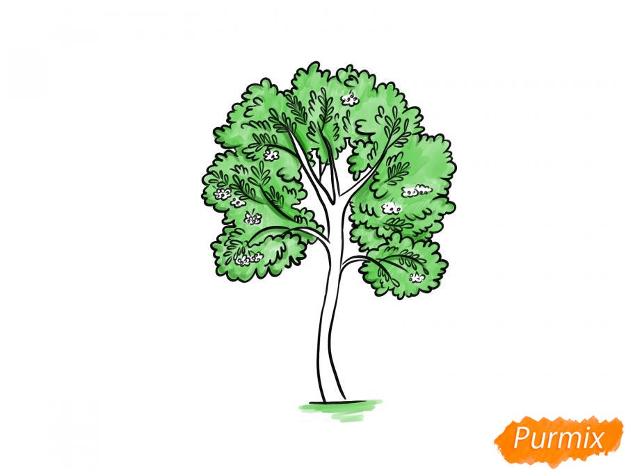 Рисуем дерево рябины - шаг 8