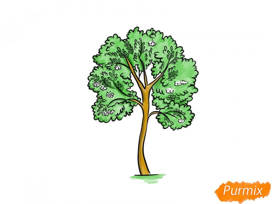 Рисуем дерево рябины - шаг 9