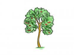 дерево рябину