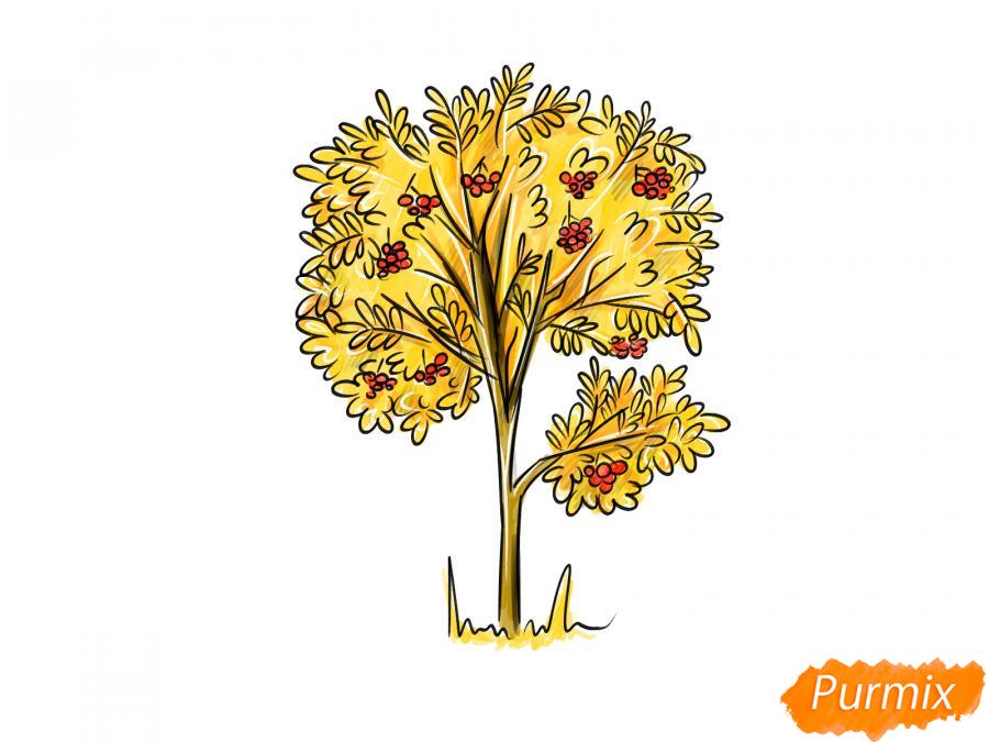 Рисуем дерево рябины осенью - шаг 10