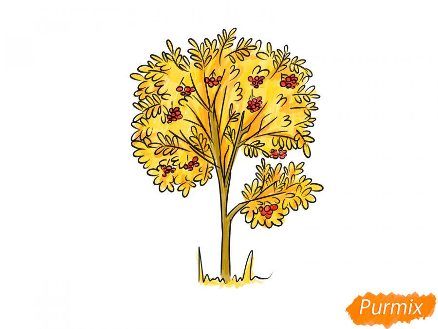 Рисуем дерево рябины осенью - шаг 9