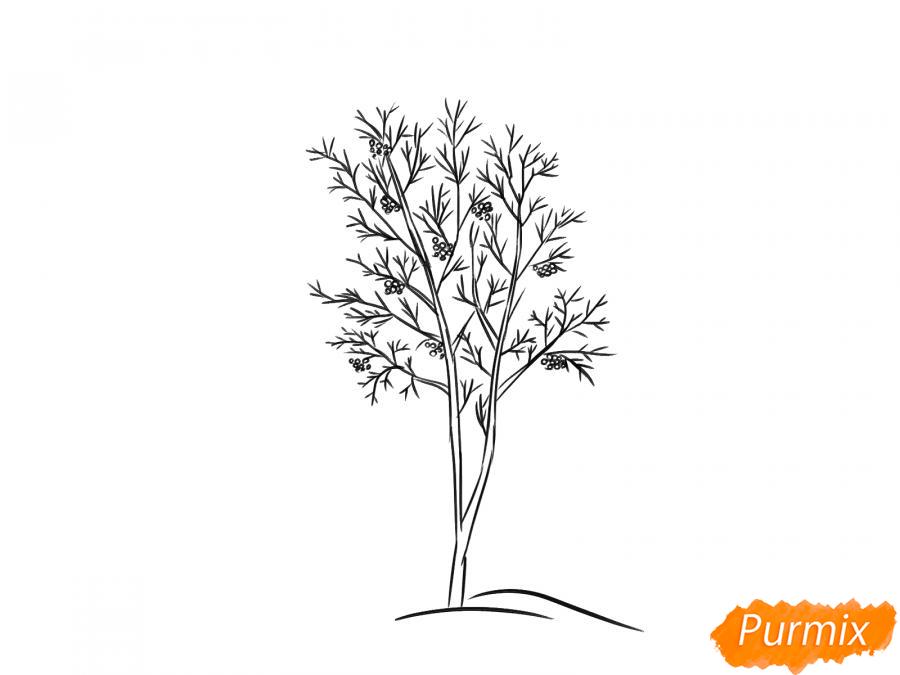 Рисуем дерево рябины зимой - шаг 6