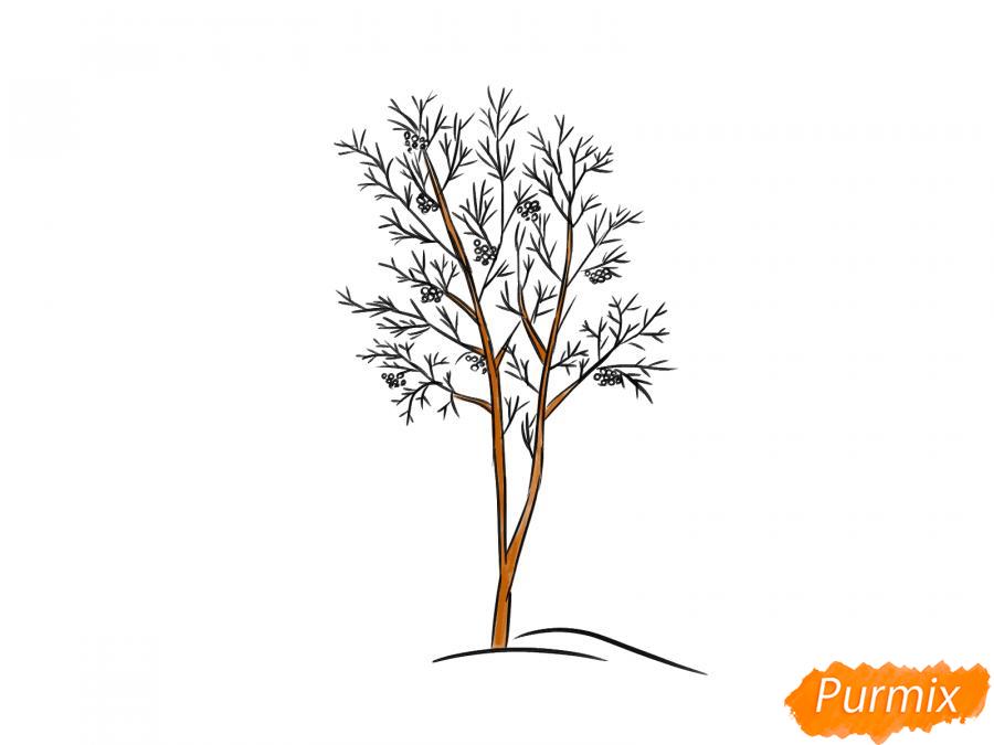 Рисуем дерево рябины зимой - шаг 7