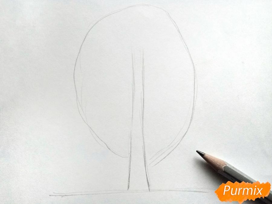 Рисуем дерево с падающими листьями - шаг 1