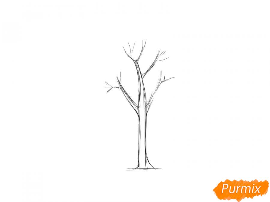 Рисуем дерево ясень - шаг 2