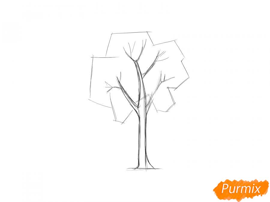 Рисуем дерево ясень - шаг 3