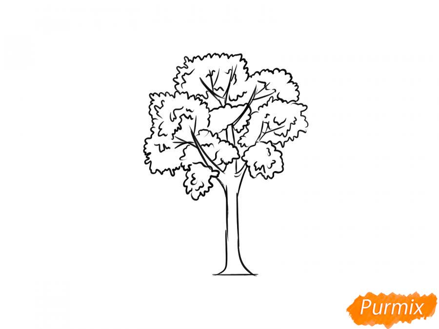 Рисуем дерево ясень - шаг 6