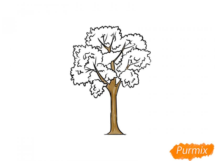 Рисуем дерево ясень - шаг 7