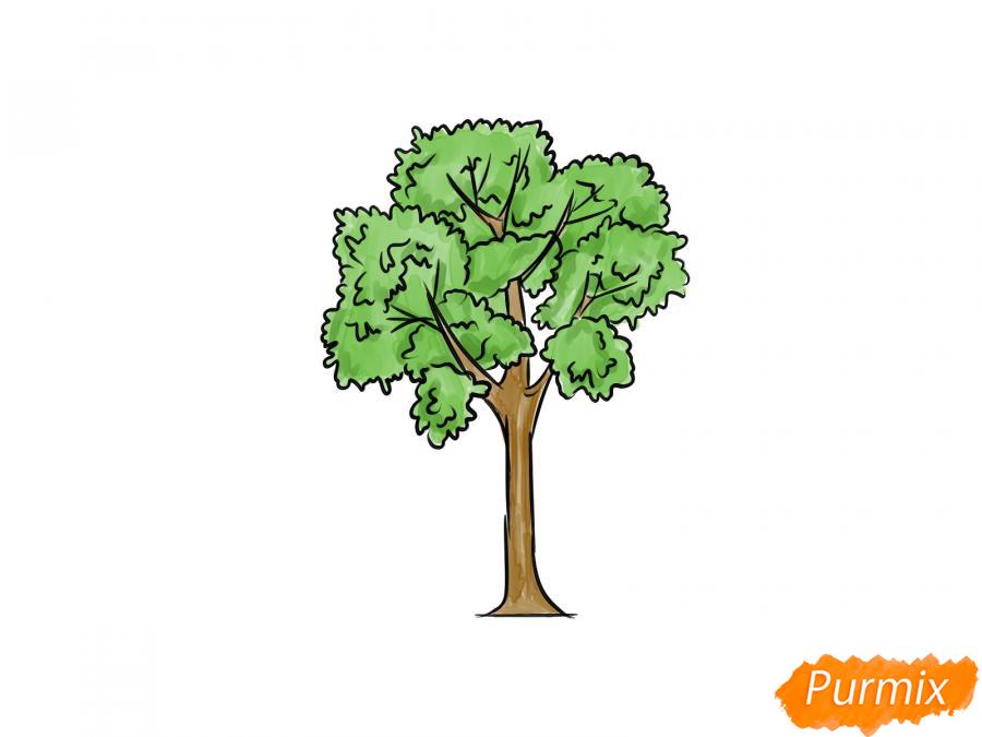 Рисуем дерево ясень - шаг 8