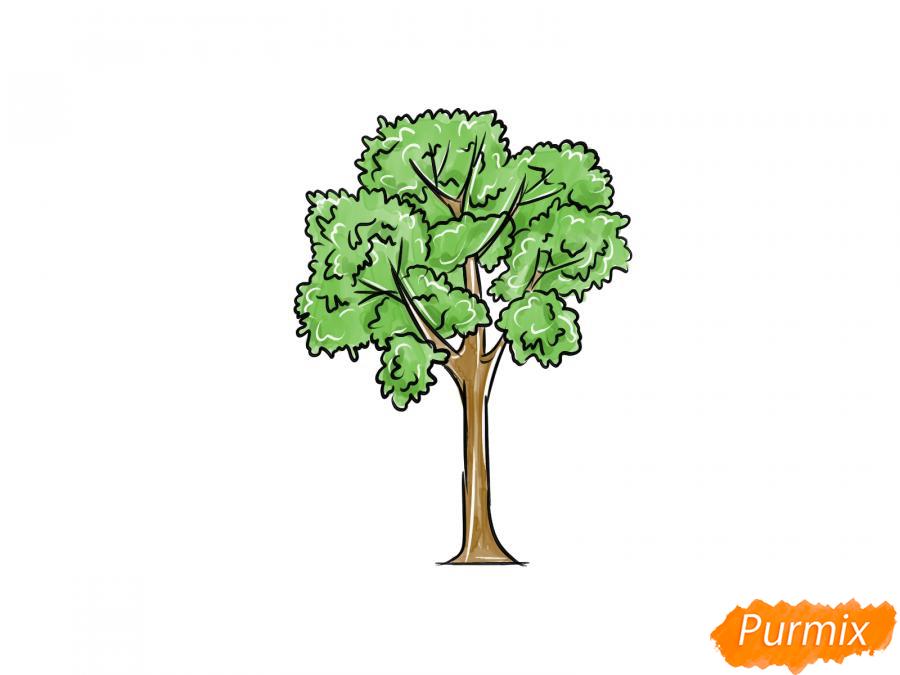 Рисуем дерево ясень - шаг 9