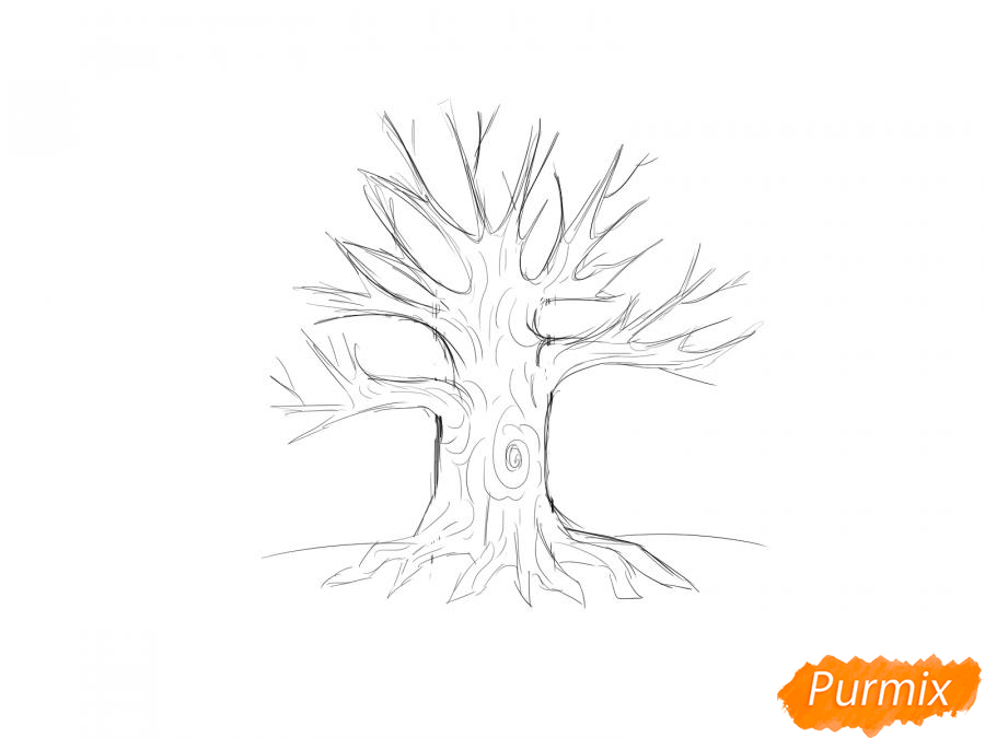 Рисуем дуб без листьев - шаг 5