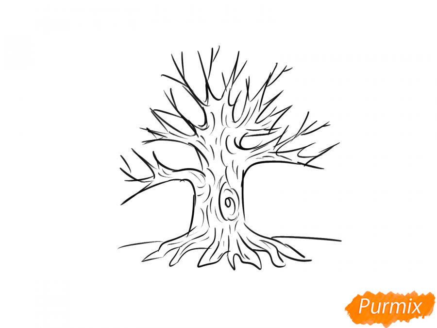 Рисуем дуб без листьев - шаг 6